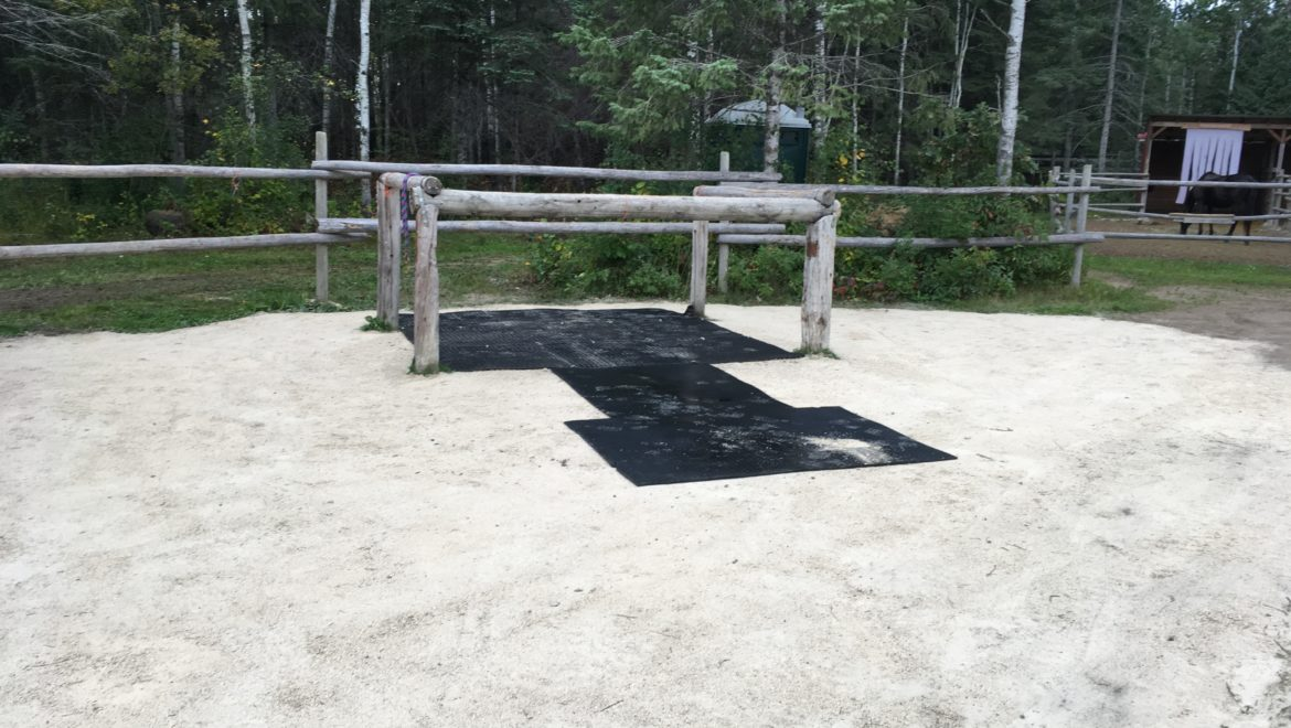 fresh ground for tack up area